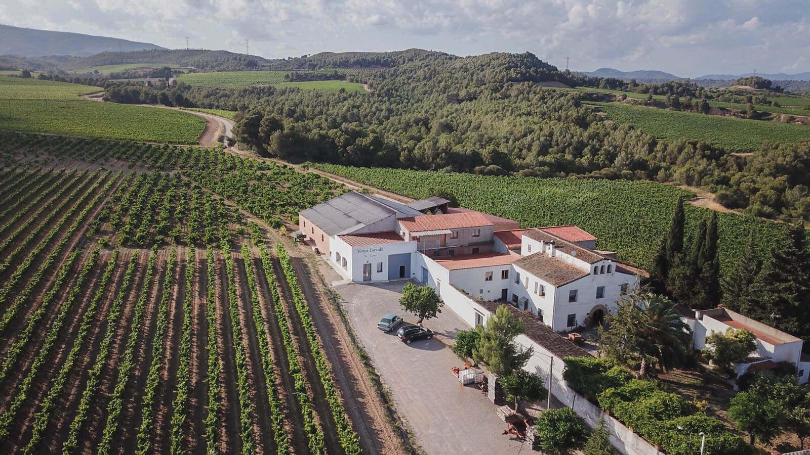 Vinya Escudé