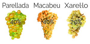 Grape of parellada, macabeu and xarel·lo from D.O. Penedès