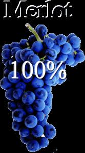 Rosé Vinya Escudé wine produced from Merlot grapes