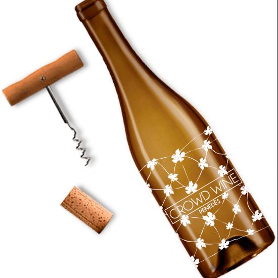 Design white wine Macabeu D.O. Penedès Verkami