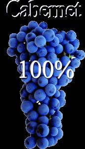 Vino tinto Vinya Escudé elaborado con Cabernet Sauvignon